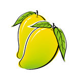 Mango design Stock Photo
