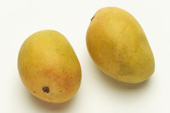 Mango di Alphonso dalla maharashtra India Fotografia Stock