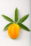 Mango di Alphonso viewssliced cima Fotografia Stock Libera da Diritti