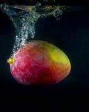 Mango, die im Wasser auf Schwarzem spritzt Lizenzfreies Stockbild