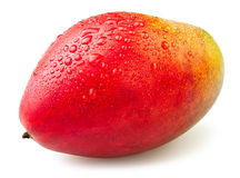 Mango drops Royalty Free Stock Photos