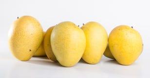 mango mango dulce en fondo Fotos de archivo libres de regalías