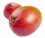 mango dwa Zdjęcie Stock