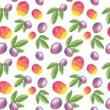 Mango e frutto della passione con il modello senza cuciture delle foglie, illustrazione dell'acquerello illustrazione di stock