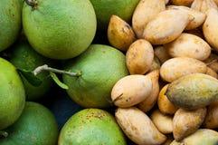 Mango e pompelmo Fotografia Stock Libera da Diritti