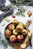 Mango en appelen op zwarte plaat, scherpe raad stock afbeelding