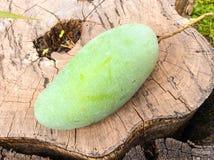 Mango en la madera Imagen de archivo libre de regalías