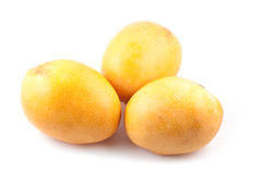 Mango family Royalty Free Stock Photos