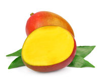 Mango fetus fruit Royalty Free Stock Photos
