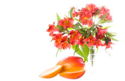 Mango and flowers. Colored mango and flowers isolated on white Royalty Free Stock Photos