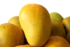 Mango fruit Royalty Free Stock Image