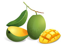 Mango Fruit Royalty Free Stock Photos