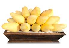 Mango fruit. Mangoes in tray on white background Royalty Free Stock Photo