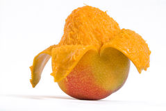 Mango fruit. A big and sweet Mango Stock Photos