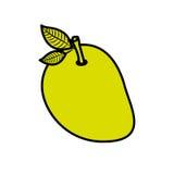 mango fruit design Royalty Free Stock Photography