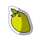 mango fruit design Stock Photos