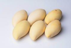 Mango. Fruit food healthy sweet Royalty Free Stock Photos