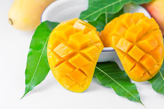 Mango fruit Stock Image