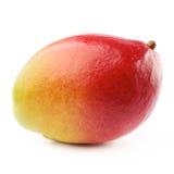 Mango fruit isolated Royalty Free Stock Photos