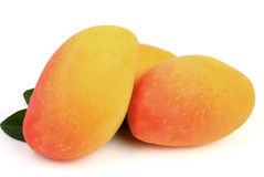 Mango fruit Royalty Free Stock Images