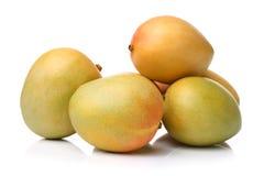 Mango fruit Royalty Free Stock Images