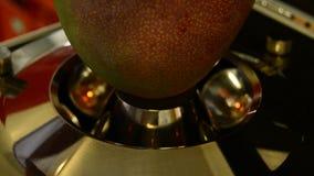 Mango fruit tropical test stock footage