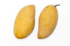 Mango. 2 mango fruit on white background Royalty Free Stock Photo