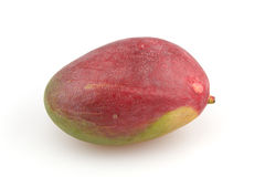 Mango. Fruit on white background Royalty Free Stock Image