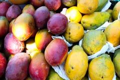 Mango fruit and yellow papaya stock photos