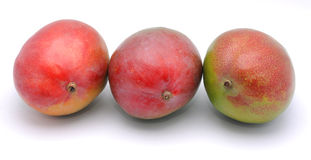 Mango fruits Royalty Free Stock Image