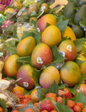 Mango fruits at the Boqueria market Stock Photography