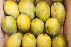Mango fruits Stock Photo