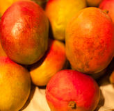 Mango fruits on a market. Mangos close up Royalty Free Stock Images