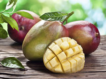 Mango fruits on a wooden table. Stock Photos