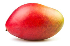 Mango full Stock Photography