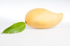 Mango giallo su bianco Fotografia Stock Libera da Diritti