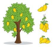 Mango giallo sull'albero con fondo bianco disegno isolato della mano di scarabocchio illustrazione di stock