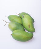 Mango or green mango on a background. Stock Image