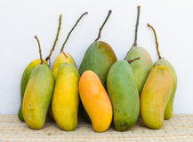 Mango, green and yellow Stock Photography