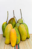 Mango, green and yellow Stock Image