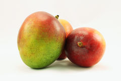 Mango Group. Group of three ripe unpeeled uncut sweet Haden mangoes Royalty Free Stock Images