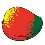 Mango - handen drog frukter isolerade vektorn Arkivfoton