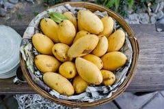 Mango i korgen fotografering för bildbyråer