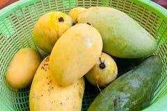 Mango i plast- korg Fotografering för Bildbyråer
