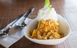 Mango ice cream with cereal Royalty Free Stock Image