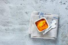 Mango ice cream royalty free stock photo