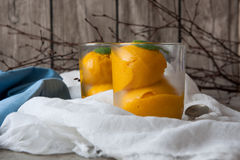 Mango ice cream sorbet Stock Images