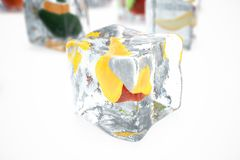 Mango in ice cube isolated on white with depth of field effects. Ice cubes with fresh berries. Berries fruits frozen in. Ice cubes. 3D rendering Stock Photography