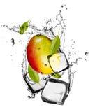 Ice fruit Stock Photography