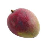Mango.isolated Stock Image
